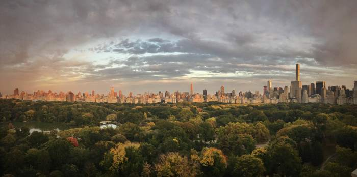 Just one of the spectacular Central Park views from Dr Susan Weber's apartment